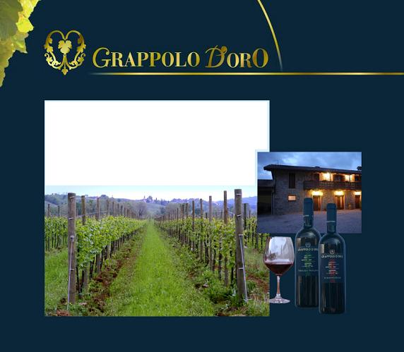 Grappolo D'oro - Rappolino